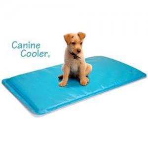 tapis à mémoire de forme pour chien